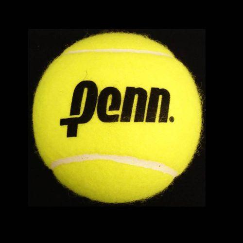Penn Jumbo Tennis Ball 4